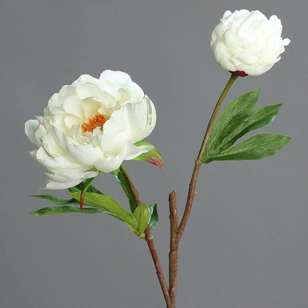 DPI Pfingstrose mit 1 offenen Blüte und 1 Knospe, cremeweiss, ca. 47 cm lang, hochwertige Kunstfloristik von DPI
