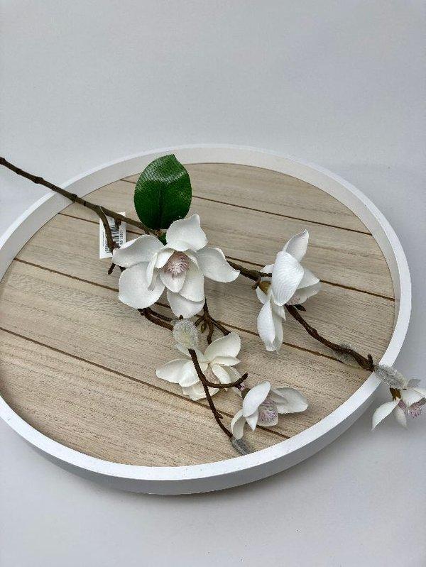 Magnolie mit vielen Blüten Kunstfloristik von DPI, cremefaben